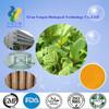 Herb Medicine Extract rhein powder