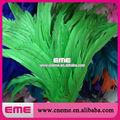 nuevo estilo verde encadenan blanqueador natural de gallo de plumas de la cola