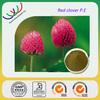 free sample isoflavone,HACCP FDA Kosher red clover extract,pure natural red clover extract isoflavone genistein