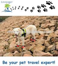 Waterproof dog shoes sport outdoor boots