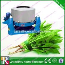 Vegetable/Potato/Mushroom Dryer Machine