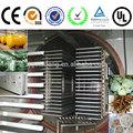 Gefriertrockner/Früchte und gemüse vakuumtrocknung maschinen
