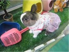 pet clothes for rabbits