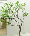 الاصطناعي شجرة الجنكة/ محاكاة شجرة الجنكة/ والشجرة الزخرفية النباتية الاصطناعي