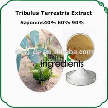 muscle enhancement herb supplement tribulus terrestris plant extract, furostanolic saponins 60%
