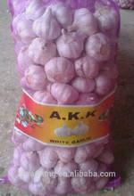 Natural Garlic China Export Garlic