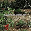 Durable de metal galvanizado/con recubrimiento en polvo de tomate en espiral estacas( fábrica)