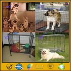 high quality foldable beautiful dog kennel wholesale