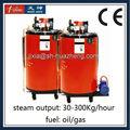 30 - 300 Kg/h automático de Gas caldera de vapor para la máquina de lavar