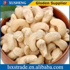 Dry Raw Cashew Nut W240