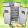 /product-gs/good-quality-used-poultry-incubator-egg-incubator-for-sale-2001397840.html