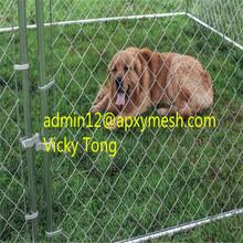 Professional Dog Kennel Wholesale