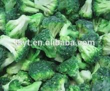 2014 Cheap New Star-K kosher IQF frozen broccoli 3-5cm 4-6cm with good quality