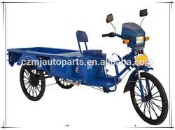 Cargo 1200W Three Wheel Motorcycle Electric Trike