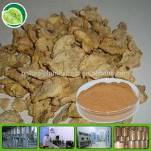 20:1 Peru maca root extract powder maca herb