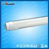 High quality 3year warranty CE ROHS 12w g10q led circular tube light