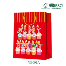 OEM Pro Industry Use Hot Selling Promotional Packaging Birthday Paper Gift Bag