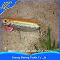 Seasky famosa tailandia peces betta