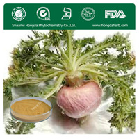 Men Sexual Health Free Sample Organic Maca Root Powder