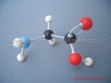 Glycine Molecule structure model