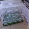 preço barato pvc revestido aves de gaiola de reprodução