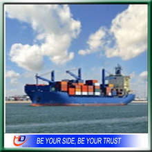 Economical Container Sea Freight from China to South Africa