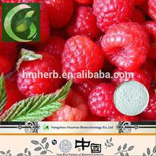 GMP100% Organic Raspberry Ketone Extract/Raspberry Fruit Extract Powder/Red Raspberry Extract