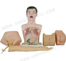 SF-405 Nurse Basic Practice Teaching Model