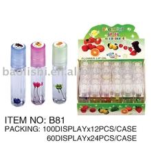 beauty 6 color mineral waterproof lip gloss