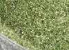 running track grass BE1013440-2