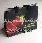shopping bag(pp woven shopping bag,gift bag,)