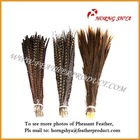 Natural Pheasant Tail Feather Golden