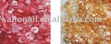 nail care --shell powder