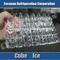 Focusun pequeña capacidad de 250 libras fábrica de cubos de hielo