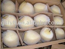 early su pear