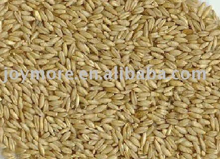 Oat ( Oats ) Avena Sativa P.E. 10:1 products, buy Oat ( Oats ...