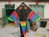 chinese large flying kite