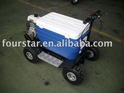 Sport Mini Gas Scooter SX-G110