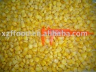 frozen sweet corn kernel