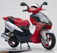 EEC/EPA DOT Approved 4 Stoke 50cc Gas Motor Scooter WZMS0528EEC/EPA