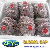 Fresh Yunnan red grape