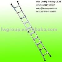Aluminum Foldable Ladder & Muil Function Ladder (AM0312A)