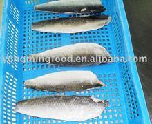 atlántico filete de arenque de pescados y mariscos