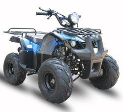 ATV ATA110-D