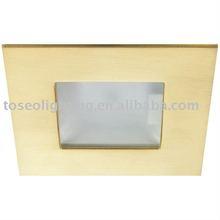 Ceiling cabinet light