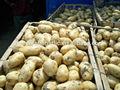 semi di patata olanda