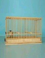 HOT SELL square wooden bird cage
