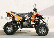 2011 NEW ATV(QUAD BIKE)