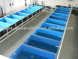Fish stock tanks