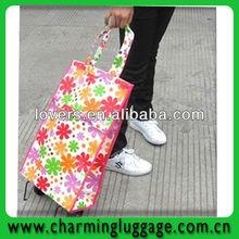 sample design shopping bag trolley
